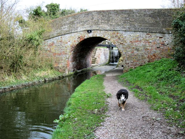 Aylesbury Arm: Wilstone Bridge (No 3)
