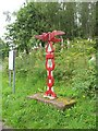 NS4263 : Millennium milepost by Richard Webb