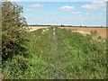 TL5467 : Drainage ditch looking north-east by Keith Edkins