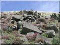 NS8166 : Moffat Hills, myriad of random stones. by Robert Murray