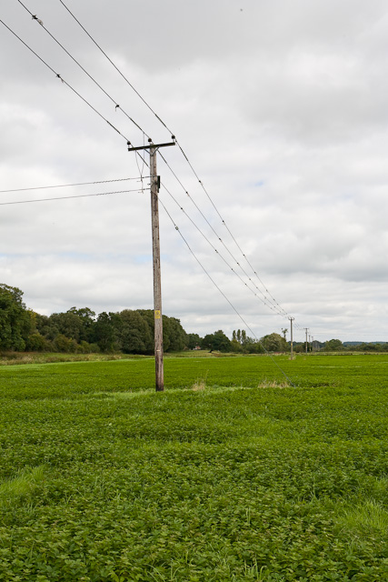 11KV electricity line, south of Harbridge