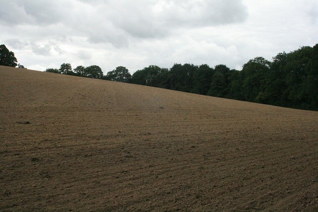 Recently tilled fields