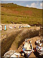SX0991 : Boscastle: harbour wall and ramp by Chris Downer