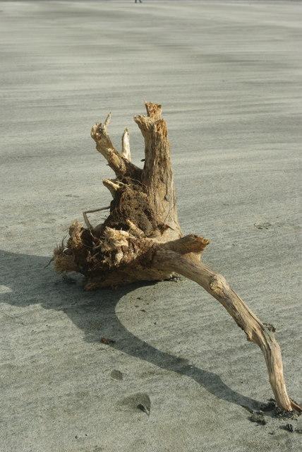 Driftwood on Glen Brittle beach