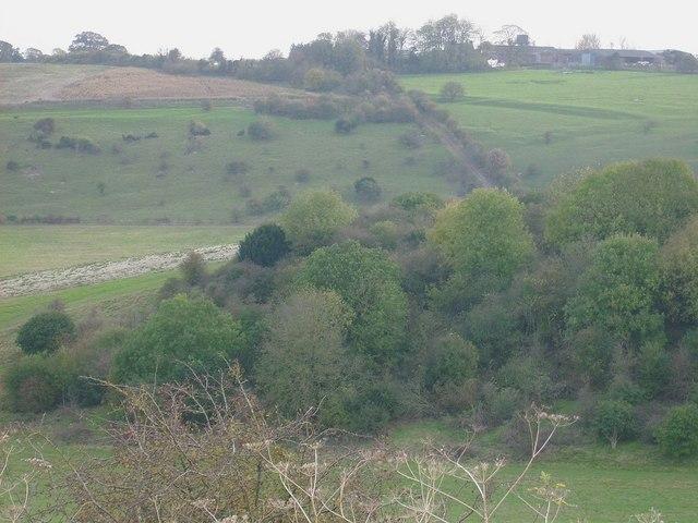 The Ridgeway (Bower Farm & Streatley Warren)