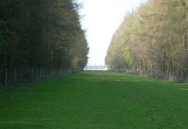 Ditchley House (through tree avenue)
