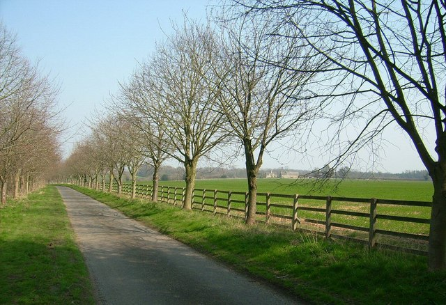 Ditchley Lane, Ditchley