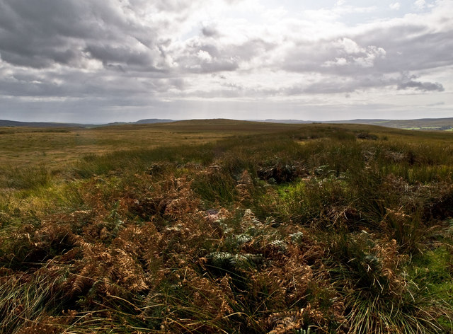 Moorland south of Quarter farm