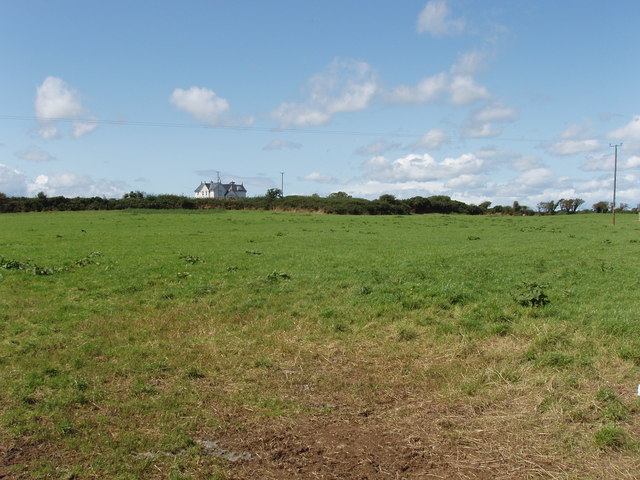 Pasture near Kilbride South and Cullencastle