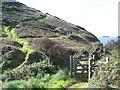 SW9137 : Cornish Coastal Path Near Nare Head by Geoff Pick
