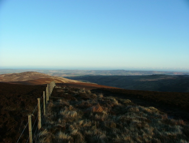 View from the Cheviot