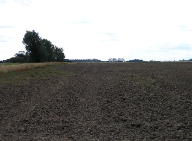 Ploughed field, Moulton Fen, Lincs