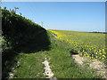 TL5661 : Bridleway to A1303 by Hugh Venables