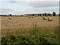 TL5969 : Straw bales beside First Drove by Keith Edkins