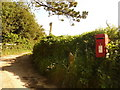 SY4199 : Pilsdon: postbox № DT6 33 by Chris Downer