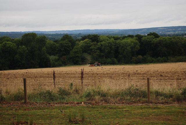 Field just north of the Tunbridge Wells Circular Path