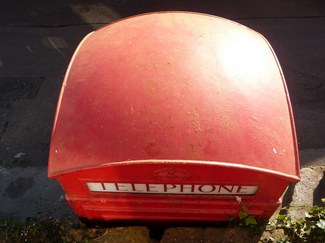Bothenhampton: phone-box roof