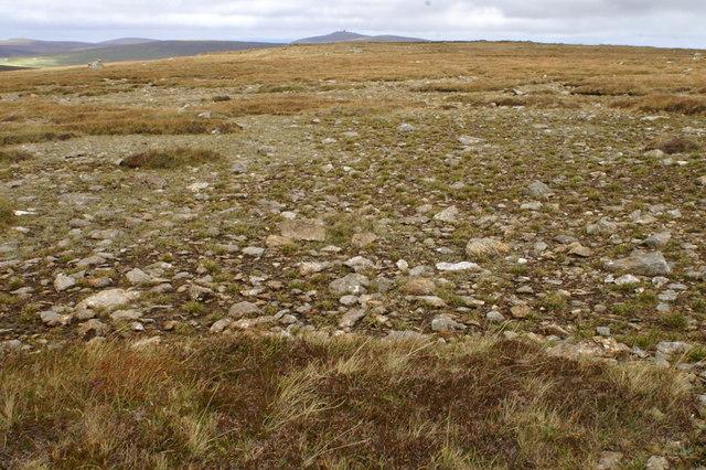Serpentine heath on Hill of Colvadale