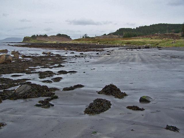 Sandy section of beach