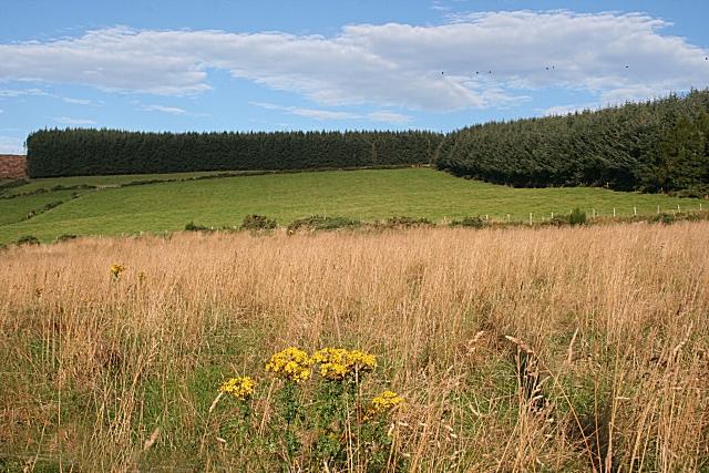 Blelack Hill