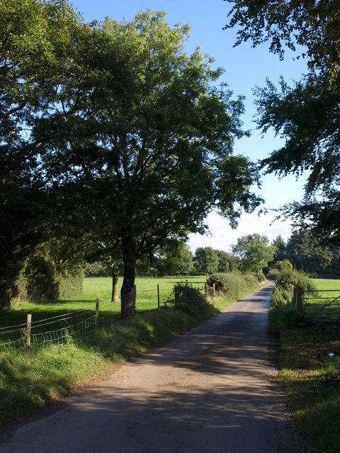 Lane at Cross Furzes