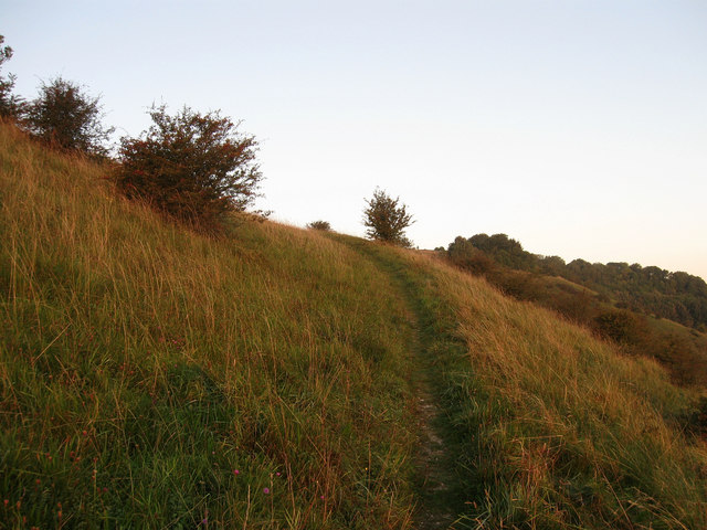 Footpath to Ditchling Beacon