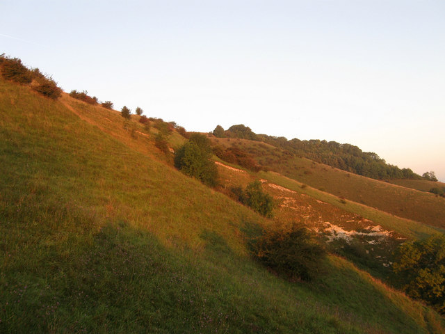 Disused Chalk Pit, Westmeston Scarp