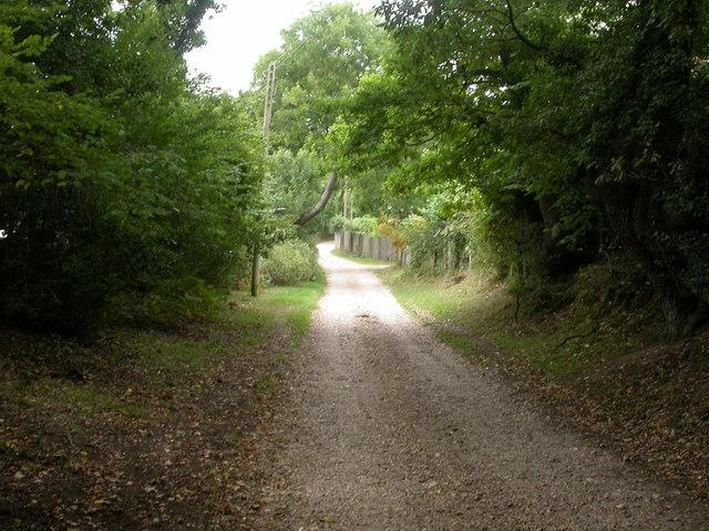 North Gorley, track