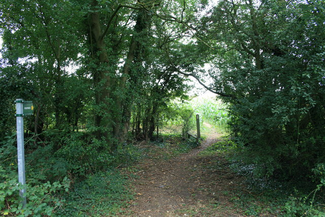 Footpath from Calcroft Lane.