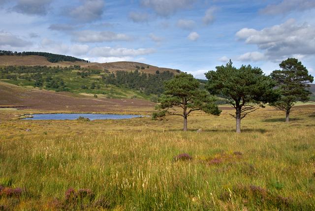 Lochan near Felagie