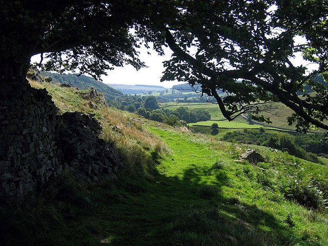 Footpath passing below Orgate Farm