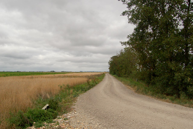 North along a farm track near Cross Drain Farm