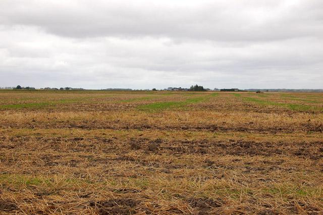 A harvested field near Martins Farm