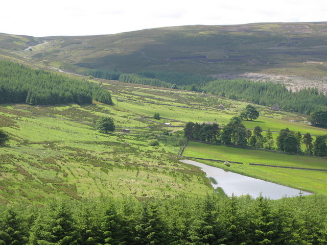 Rough pastures, woodland and Eastend Reservoir above Allenheads