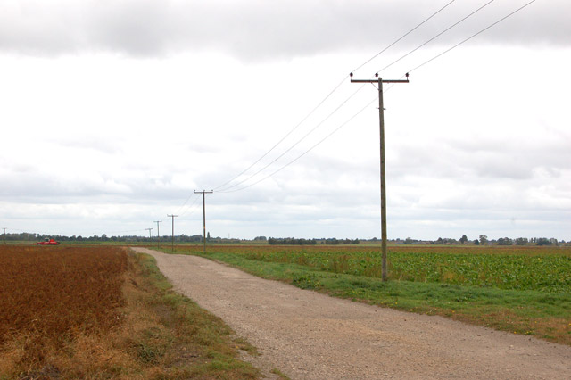 Looking west from Martins Farm