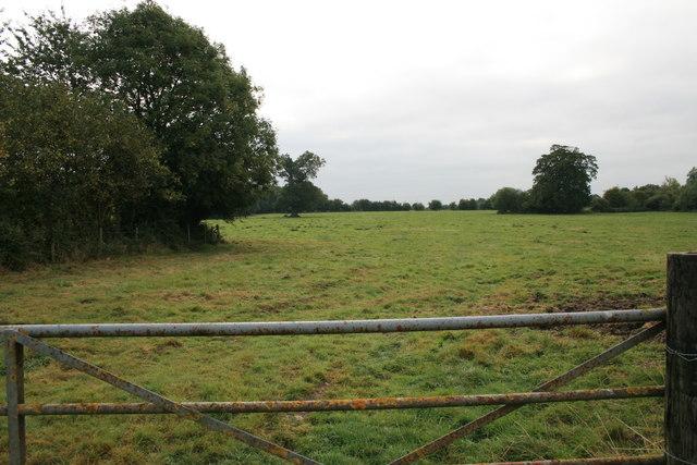 Field in Broadwell