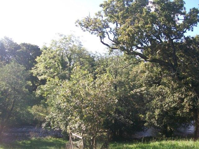 Afon Dwyfor below Pont-Rhyd-y-Benllig