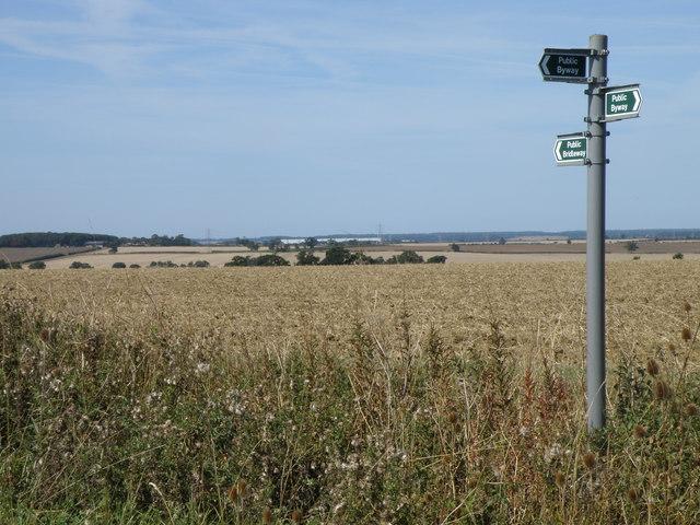 Signpost on Warren lane