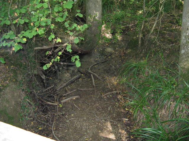 Dry stream bed at Greenhurstfield Plantation