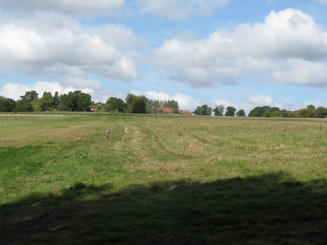 Field SE of Hermongers