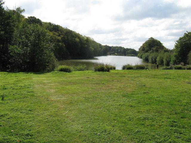 Fishing lake east of Rudgwick