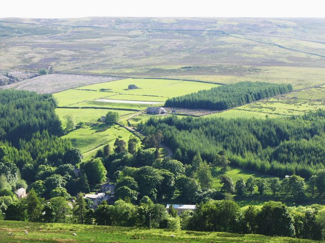 Woodland, pastures and moorland above Allenheads