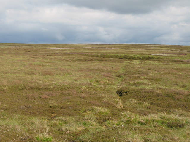 Moorland north of Shorngate Cross