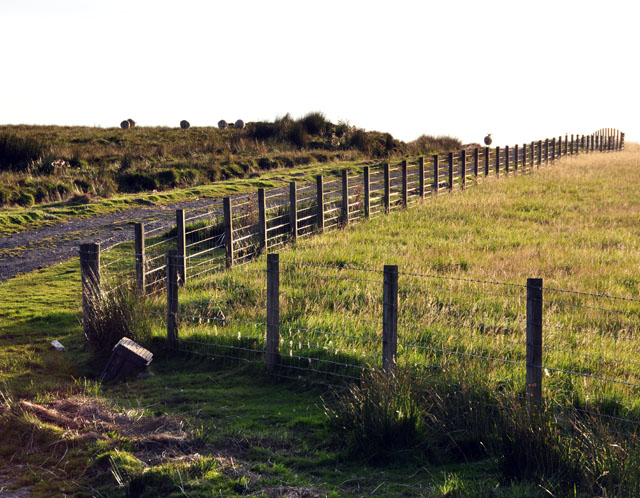 Track to Logan farm