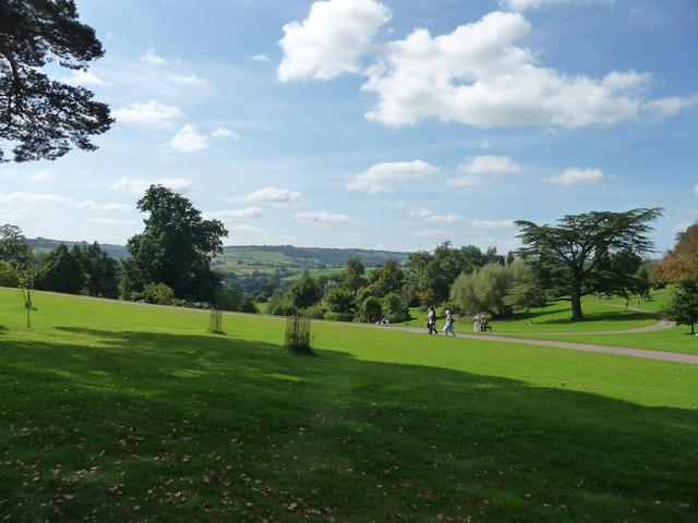 Mid Devon : Knightshayes, Green Grass & Trees