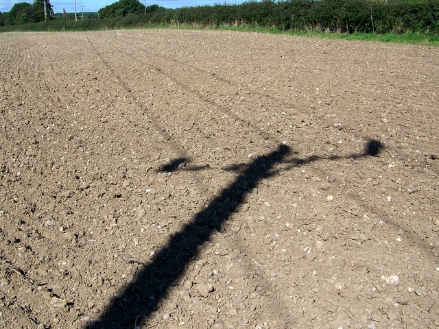 Ploughed field, West Down