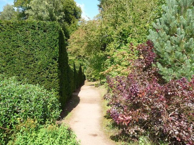 Mid Devon : Knightshayes Court & Gardens