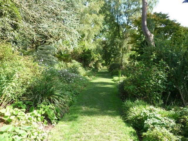 Mid Devon : Knightshayes Court, Grassy Pathway