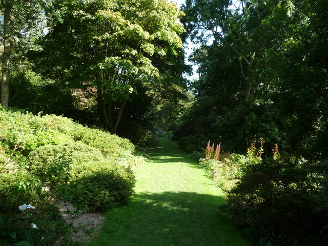 Mid Devon : Knightshayes Court, Grassy Path