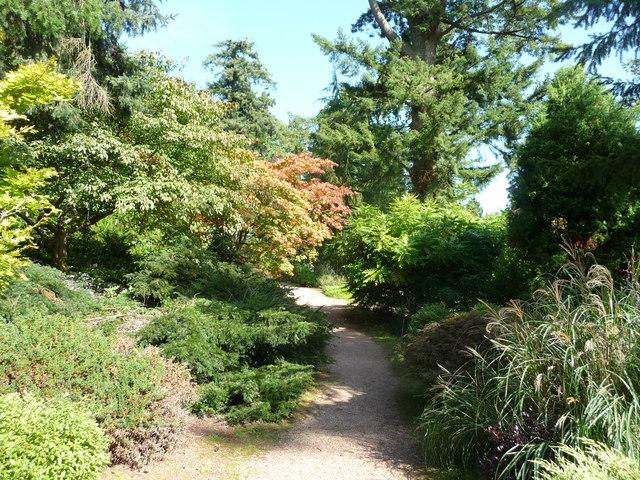 Mid Devon : Knightshayes Court, Plants & Footpath